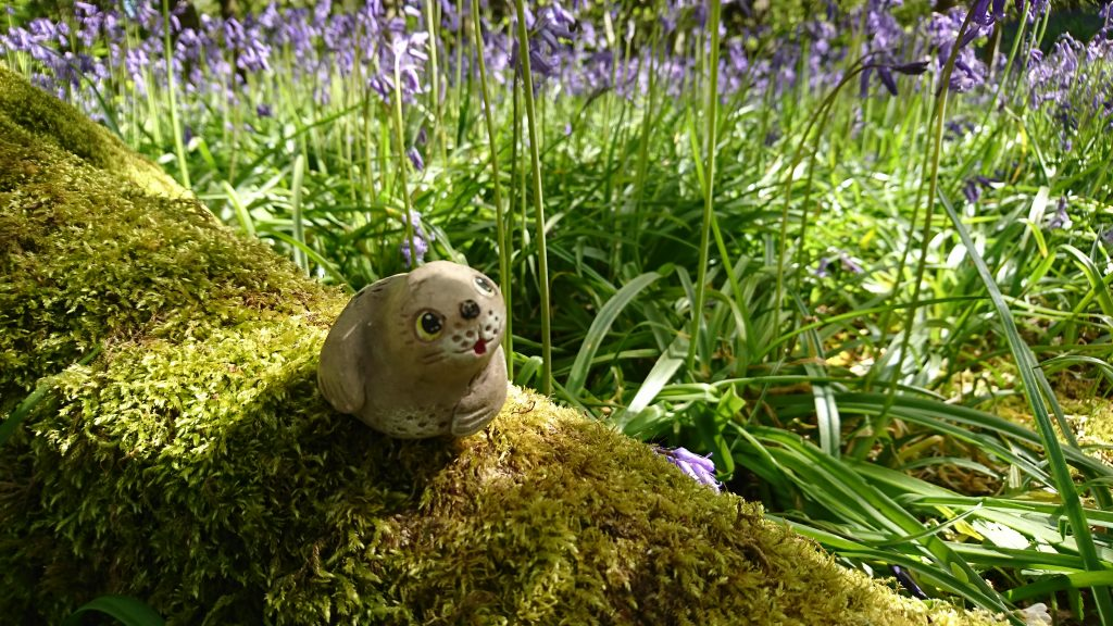 Walk in the woods in Spring - on a mossy perch