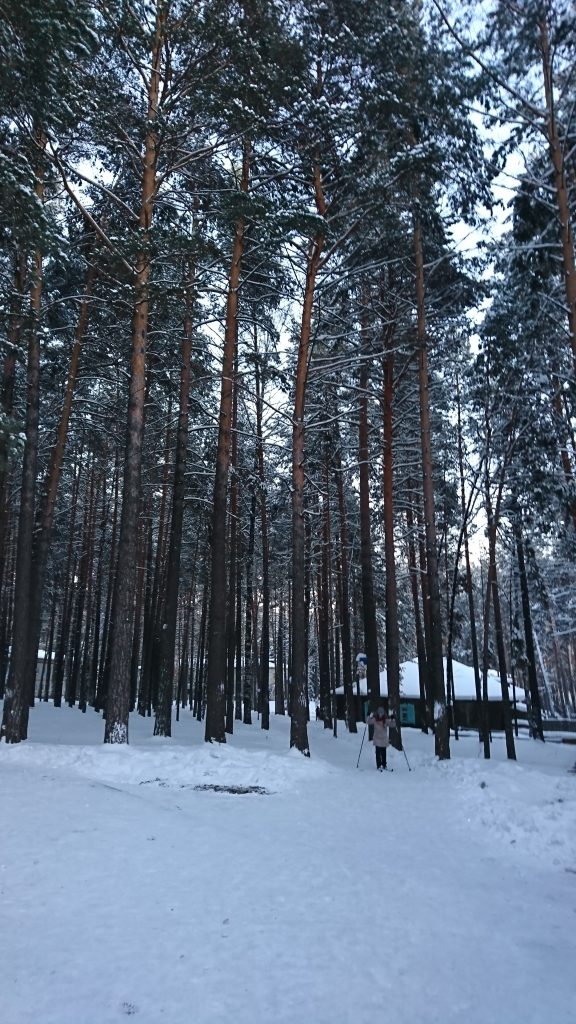 Nordic Skiing in the camp grounds